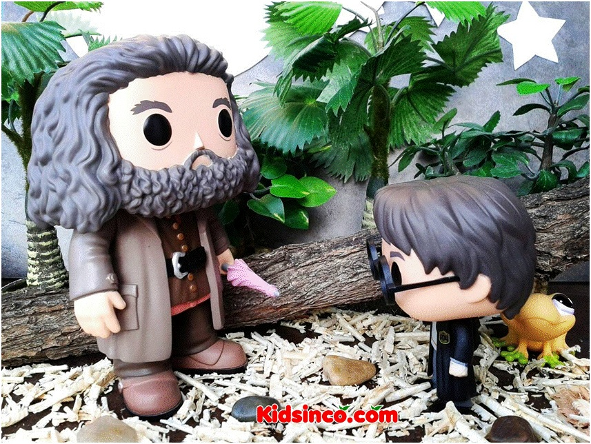 The Wodcutters_Harry Potter_Hardy_forest_Funko_Funko Pop