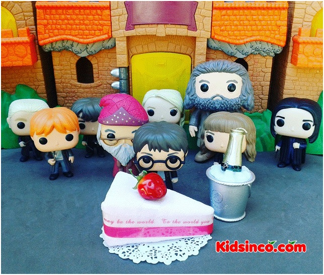 Harry Potter_birthday_wine_cake_castle_Funko_Funko Pop