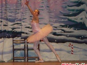 Sugar Plum Fairy - 20