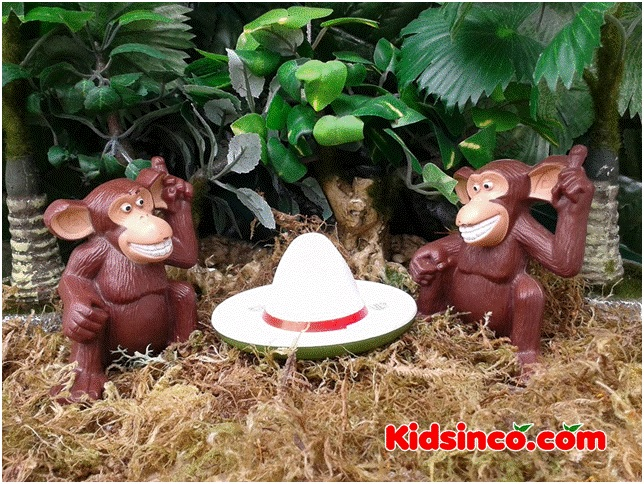 Monkeys and the Hats_monkeys_hat_forest