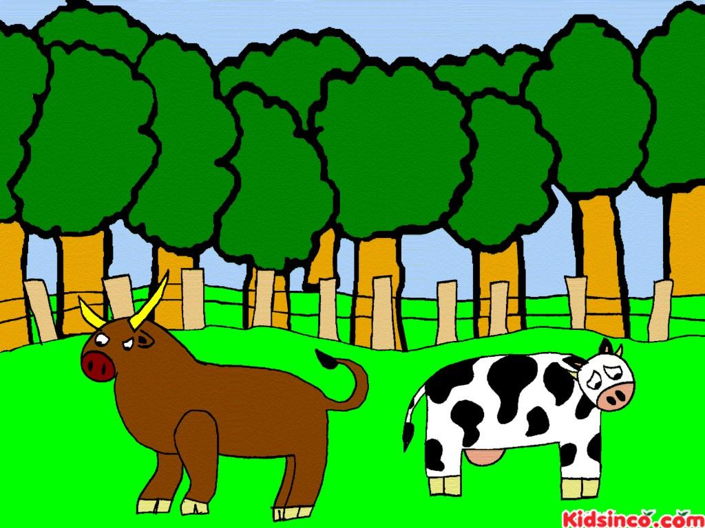 Toro , Vaca, bull, cow