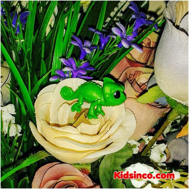 The Rose and the Chameleon_rose_chameleon